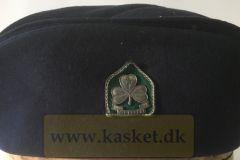Det Danske Pigespejderkorps