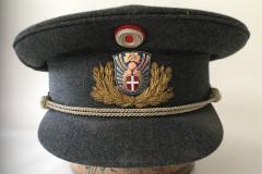 Sektionschef, M50
