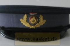 Fængselsvæsnet Betjent