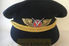 Grønlandsfly Besætning