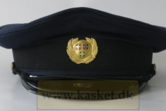 SAS steward