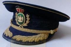 Politi inspektør