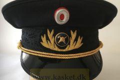 Brandinspektør, provins