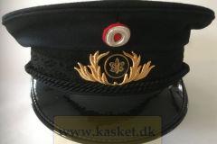 Odense Brandvæsen