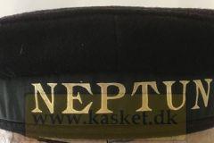 Matroshue Neptun