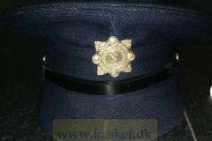 Irland-politi